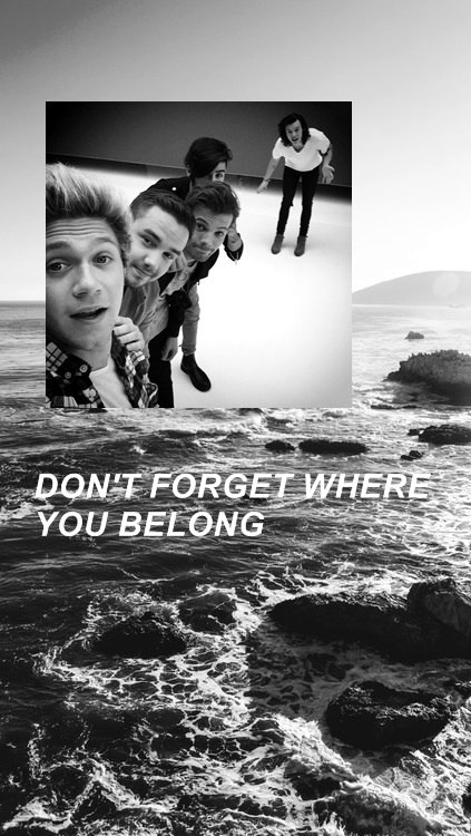 Don't Forget Where You Belong One Direction